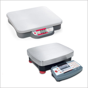 How to choose the best bench scales that suits your requirement